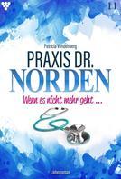 Patricia Vandenberg: Praxis Dr. Norden 11 – Arztroman ★★★