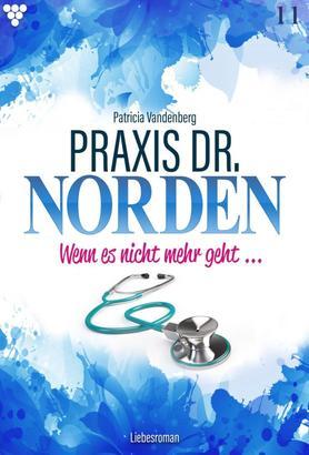 Praxis Dr. Norden 11 – Arztroman