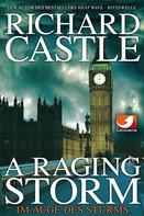 Richard Castle: Derrick Storm: A Raging Storm - Im Auge des Sturms ★★★★