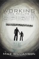 Mike Williamson: Working in the Realms of Spirit