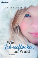 Denise Hunter: Wie Schneeflocken im Wind ★★★★