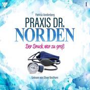 Praxis Dr. Norden 1 - Arztroman - Der Druck war zu groß