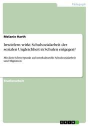 Inwiefern wirkt Schulsozialarbeit der sozialen Ungleichheit in Schulen entgegen? - Mit dem Schwerpunkt auf interkulturelle Schulsozialarbeit und Migration