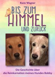 Bis zum Himmel und zurück - Die Geschichte über die Reinkarnation meines Hundes Bobby