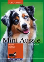 Mini Aussie - Charakter, Erziehung, Gesundheit