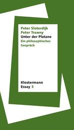Unter der Platane - Ein philosophisches Gespräch