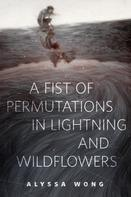 Alyssa Wong: A Fist of Permutations in Lightning and Wildflowers ★★