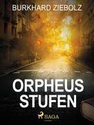 Burkhard Ziebolz: Orpheus Stufen - Kriminalroman
