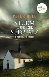 Sturm über der Südpfalz: Der zweite Fall für Philipp Sturm - Kriminalroman