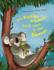 Die Koalas träumen hoch oben in den Bäumen - Ein humorvolles Bilderbuch zum Thema Einschlafen ab 3 Jahren