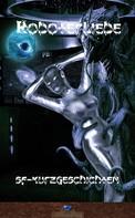 Erik Schreiber: Roboterliebe ★★