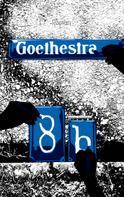 Andreas Eichenseher: Goethestraße 8b