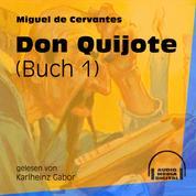 Don Quijote, Buch 1 (Ungekürzt)