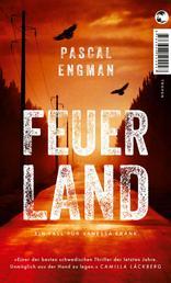 Feuerland - Thriller