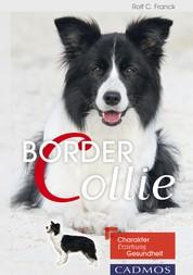 Border Collie - Charakter, Erziehung, Gesundheit.