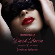 Geheimes Verlangen - Dark Room, Band 1 (ungekürzt)