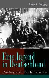 Eine Jugend in Deutschland (Autobiographie eines Revolutionärs) - Der Weg Ernst Tollers vom deutschen Bürgerlichen zum revolutionären Sozialisten