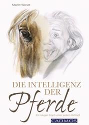 Die Intelligenz der Pferde - Ein kluger Kopf unter jedem Schopf