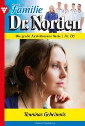 Familie Dr. Norden 733 – Arztroman - Rominas Geheimnis