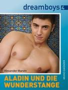 Alexander Marvin: Aladin und die Wunderstange ★★★★