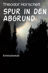 Spur in den Abgrund - Kriminalroman