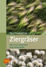 Taschenatlas Ziergräser - 188 Arten erkennen und verwenden