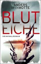 Bluteiche - Kriminalroman