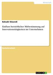 Einfluss betrieblicher Mitbestimmung auf Innovationstätigkeiten im Unternehmen