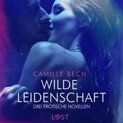 Wilde Leidenschaft – Drei erotische Novellen