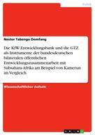 Nestor Tabengo Domfang: Die KfW-Entwicklungsbank und die GTZ als Instrumente der bundesdeutschen bilateralen öffentlichen Entwicklungszusammenarbeit mit Subsahara-Afrika am Beispiel von Kamerun im Vergleich