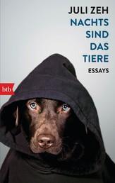 Nachts sind das Tiere - Essays