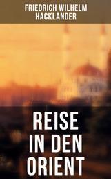 Reise in den Orient - Reiseberichte: Türkei, Konstantinopel, Beirut, Jerusalem, Ägypten, Malta und mehr...
