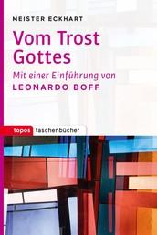 Vom Trost Gottes - Mit einer Einführung von Leonardo Boff