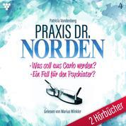 Praxis Dr. Norden 2 Hörbücher Nr. 4 - Arztroman - Was soll aus Carlo werden? - Ein Fall für den Psychiater?