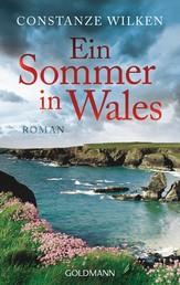 Ein Sommer in Wales - Roman