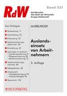 Horst Marburger: Auslandseinsatz von Arbeitnehmern