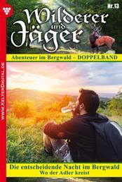 Wilderer und Jäger 13 – Heimatroman - Die entscheidende Nacht im Bergwald – Wo der Adler kreist