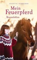 Chantal Schreiber: Mein Feuerpferd - Sturmfohlen ★★★★