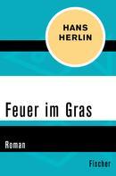 Hans Herlin: Feuer im Gras