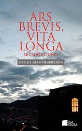 Ars brevis, vita longa - Microficciones