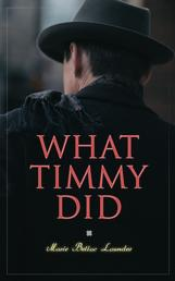 What Timmy Did - Mystery Novel