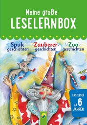 Meine große Leselernbox: Spukgeschichten, Zauberergeschichten, Zoogeschichten - Mit 3 Lesestufen
