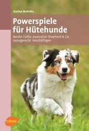 Powerspiele für Hütehunde - Border Collie, Australian Shepherd & Co. rassegerecht beschäftigen