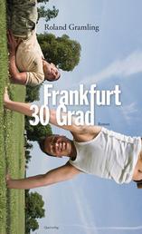 Frankfurt 30 Grad - Roman