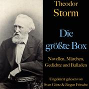 Theodor Storm: Die größte Box - Novellen, Märchen, Gedichte und Balladen