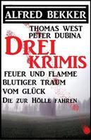 Alfred Bekker: Bekker/West/Dubina - Drei Krimis: Feuer und Flamme/Blutiger Traum vom Glück/Die zur Hölle fahren