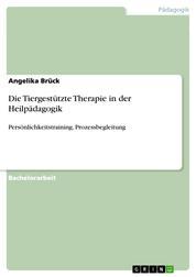 Die Tiergestützte Therapie in der Heilpädagogik - Persönlichkeitstraining, Prozessbegleitung