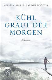 Kühl graut der Morgen - Roman