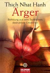 Ärger - Befreiung aus dem Teufelskreis destruktiver Emotionen