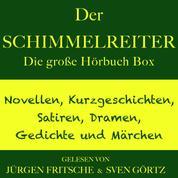 Der Schimmelreiter – sowie zahlreiche weitere Meisterwerke der Weltliteratur - Die große Hörbuch Box mit Novellen, Kurzgeschichten, Satiren, Dramen, Gedichten und Märchen